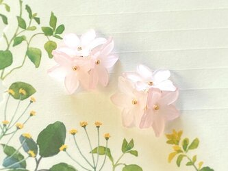 フラワーガラスのブーケ春色桜色ももいろピアス / イヤリングの画像