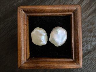 淡水芥子Perlのpierce Ⅳの画像
