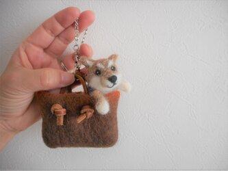 バッグに入った柴犬バッグチャームの画像
