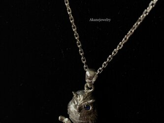 ロイヤルブルームーンストーンとミミズクのネックレスの画像