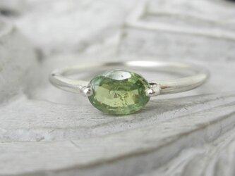 デマントイドガーネット・リング(silver)の画像