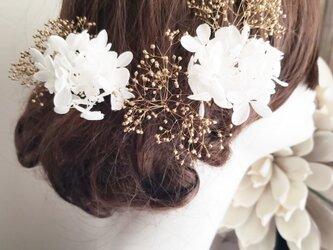 プリザーブドフラワー 紫陽花とかすみ草の髪飾り5点Set No792の画像