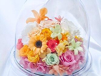 【プリザーブドフラワー/花爛漫にドームの中で咲く魔法の花】フラワードームギフトボックスリボンラッピング付きの画像