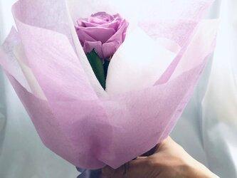 【プリザーブドフラワー/紫の薔薇のふんわり一輪ラッピング】の画像
