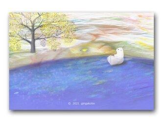 「櫂がどっかにいっちゃった・・・見かけなかった?」白くま 鳥 ほっこり癒しのイラストポストカード2枚組 No.1331の画像