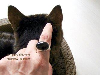 [指で育てるペット]ring オニキス×silverの画像