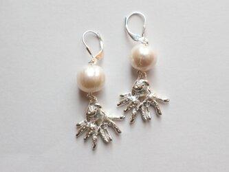 【Silver925】タコと真珠の耳飾り~ピアス/イヤリング~の画像