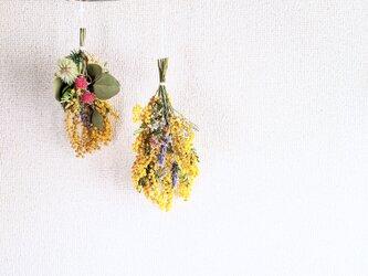 無農薬のミモザとフィリカのぷるんとした素朴でレトロなドライフラワー・スワッグガーランドの画像