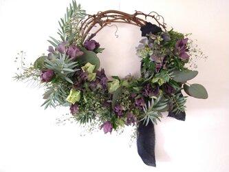 クリスマスローズと紫陽花のwreathの画像