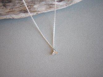 ツバキの実のネックレスの画像