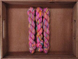 インダスからの贈り物【オリジナル段染め糸  細】(526) 1本の画像