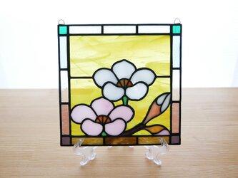 ステンドグラス ミニパネル 梅 15cmの画像