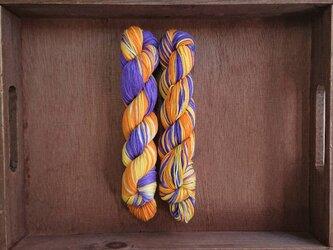 インダスからの贈り物【オリジナル段染め糸】(530) 1本の画像