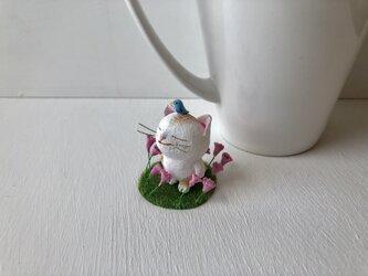 幸せは、意外と近くに。茶トラ白の画像