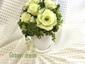Green dressの画像