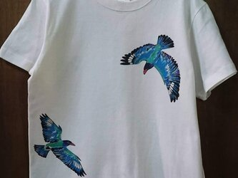 ブッポウソウ Tシャツ adult / ブッポウソウの画像
