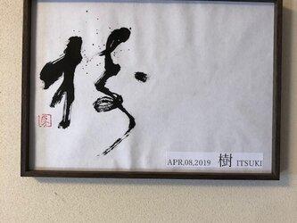 命名書「樹」の画像