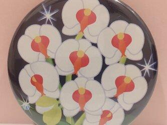 オリジナルデザイン缶バッチ:胡蝶蘭の画像