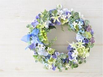 紫陽花に緑のスグリの実をそえて リース:紫陽花 むささき 青 グリーン 白 の画像