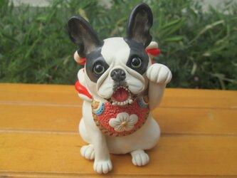 招き犬★フレンチブルドッグ③(商売繫盛)の画像