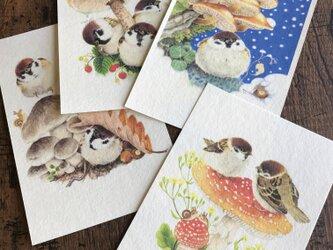 ポストカード『スズメ』4種類セットの画像