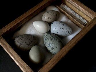 擬卵の入った小箱E。の画像