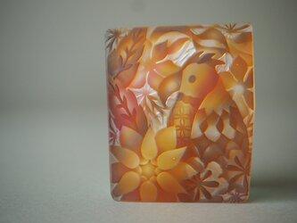 えがらす(オレンジ・オウム)の画像