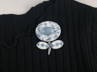 パウダーブルーの花2 エンジェライトの画像