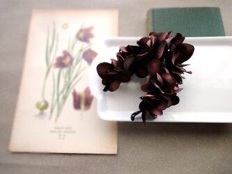 紫陽花のバナナクリップ ■ ドラマティックカラー ■B チョコレートクリームの画像
