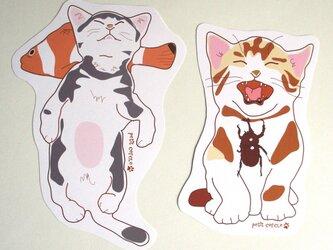 猫変形ポストカード(ちょっとだけ夏)の画像