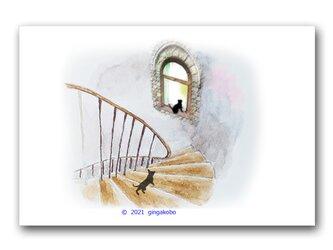 「探し、迷い、そして包摂する」 猫 ほっこり癒しのイラストポストカード2枚組No.1348の画像