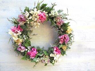 花を紡ぐの画像