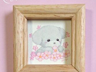 額付ミニイラスト 「トイプードルちゃんとピンクのお花」の画像