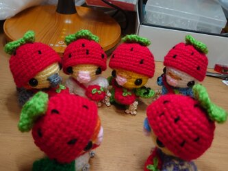 イチゴの帽子を被ったインコ(セキセイインコ、オカメインコ)受注の画像