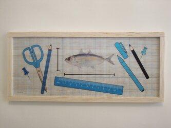 study of Fishの画像