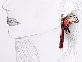 ヴィンテージビーズ 蝶のピアス(アゲハ)の画像