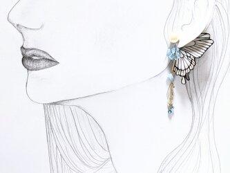 【新作タイプ】蝶のピアス(かすみ草)の画像