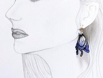 【新作タイプ】羽を休めている蝶のピアスの画像
