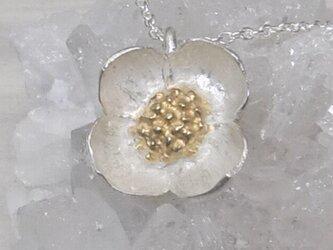 ハナミズキ*925/K14gp pendantの画像