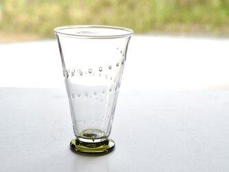 ヒカリヒトスジグラス(若葉色)の画像