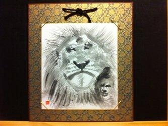 眠そうな百獣の王ライオンの画像