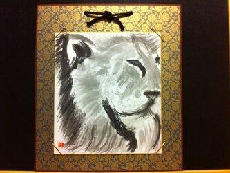 様子を伺う百獣の王ライオンの画像
