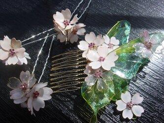 アゲハ蝶と桜(ヘアコーム&Uピン)の画像