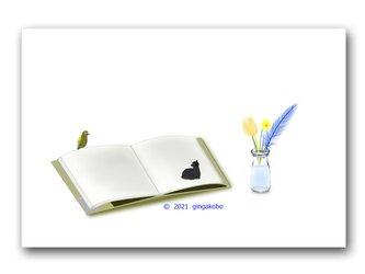 「微妙な距離感、いいね~」 猫 オウム 鳥 ほっこり癒しのイラストポストカード2枚組No.1356の画像