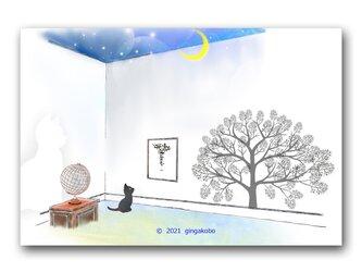 「未来に逸(はぐ)れて惟(おも)う」 猫 月 ほっこり癒しのイラストポストカード2枚組No.1358の画像