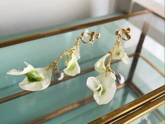 【6月の誕生石】淡水パール&「晴れやかな魅力」花言葉を持つラナンキュラスのイヤリング/ピアスの画像