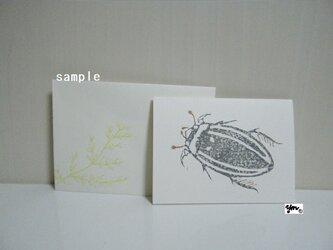 ミニカードセット〈ゲンゴロウ-1〉の画像