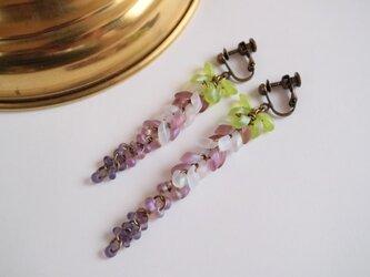藤の花のイヤリングの画像