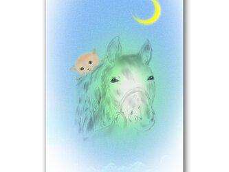 「その瞳に何度も助けられて」 猫 馬 三日月 ほっこり癒しのイラストポストカード2枚組No.1363の画像