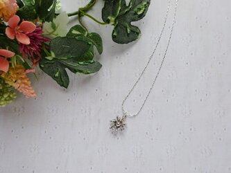 散歩道の草花ネックレスの画像